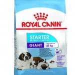 Royal Canin Giant Starter, 15 kg