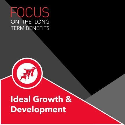 DROOLS FOCUS IDEAL GROWTH & DEVELOPMENT