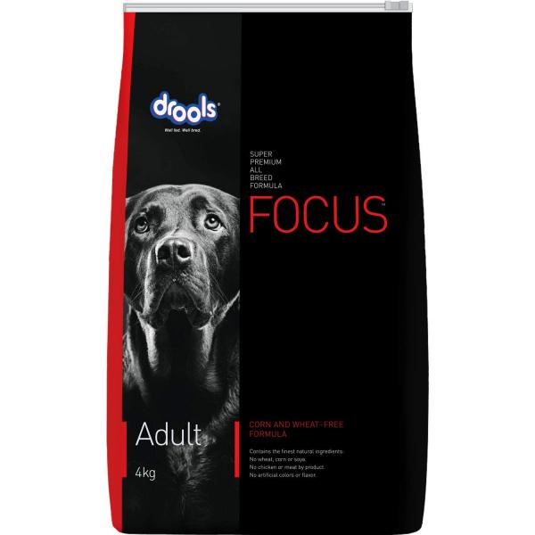 Drools focus adult 4 kg